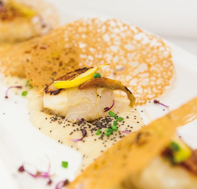 Tosho Gastro Bar, Restaurantes | Macaronesia Guía de Fuerteventura