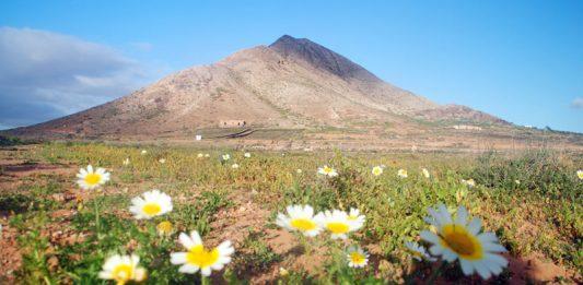 Tindaya   Macaronesia Fuerteventura