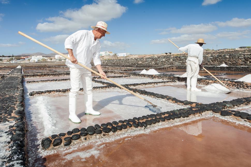 Las Salinas del Carmen museum | Macaronesia Fuerteventura