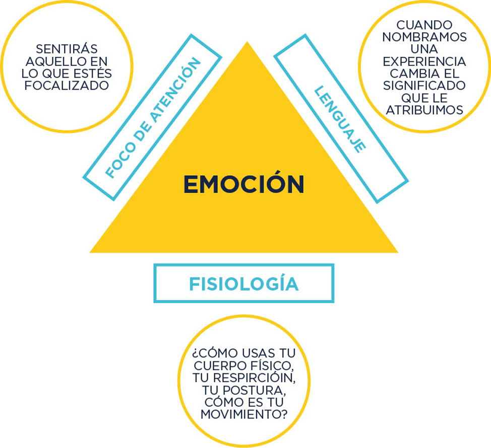 THE POWER OF WORDS | Macaronesia Fuerteventura