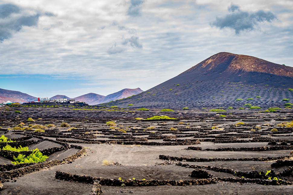 Sonidos Líquidos Lanzarote | Macaronesia Fuerteventura