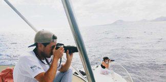 Cetáceos e investigación | Macaronesia Fuerteventura