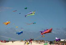 Festival Internacional de Cometas | Macaronesia Fuerteventura