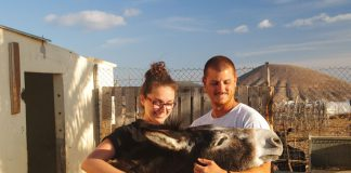 The Animal Academy Fuerteventura | Macaronesia Fuerteventura