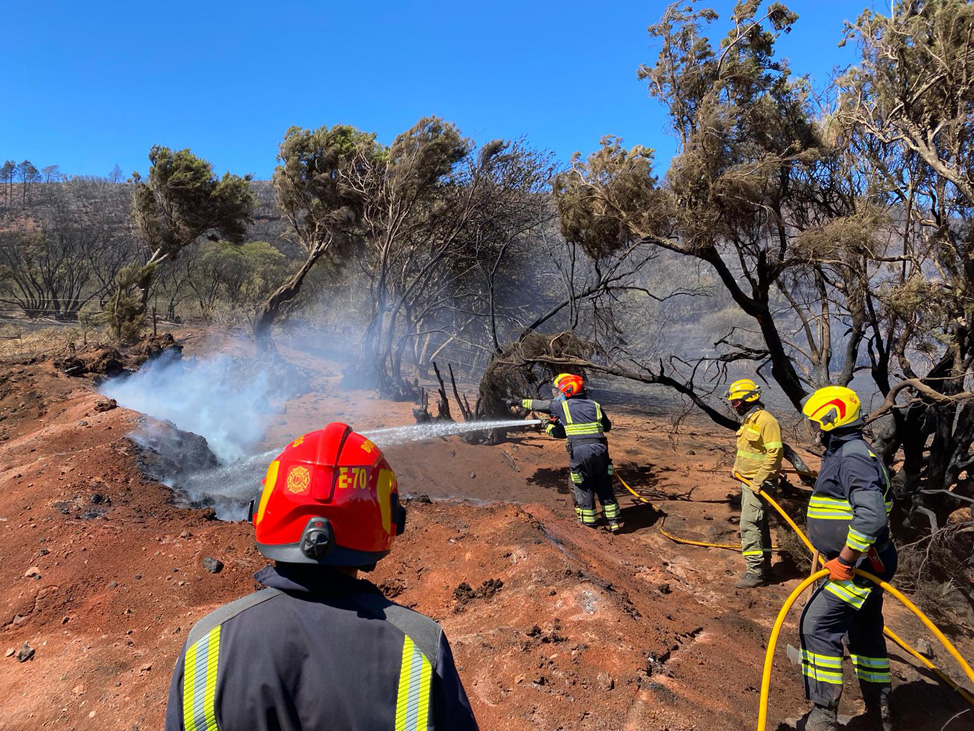 Los bomberos de Fuerteventura colaborando en la extiención del incendio de La Palma | Macaronesia Fuerteventura