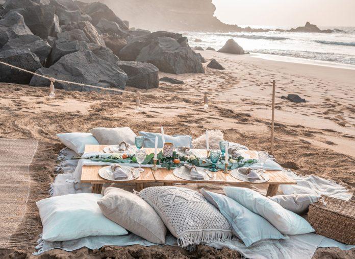 La magia de los picnics de Coco y Bambú