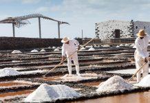 La sal de Fuerteventura, producto gourmet | Macaronesia Fuerteventura