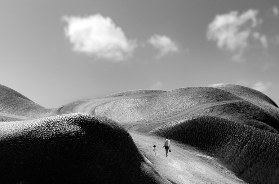 Pieles Serie Fotográfica de Charo Barea   Macaronesia Fuerteventura