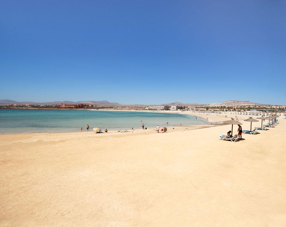 Playa de Caleta de Fuste, Fuerteventura | Macaronesia Fuerteventura