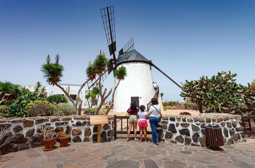 Visitar Museo del Queso en Antigua   Macaronesia Fuerteventura