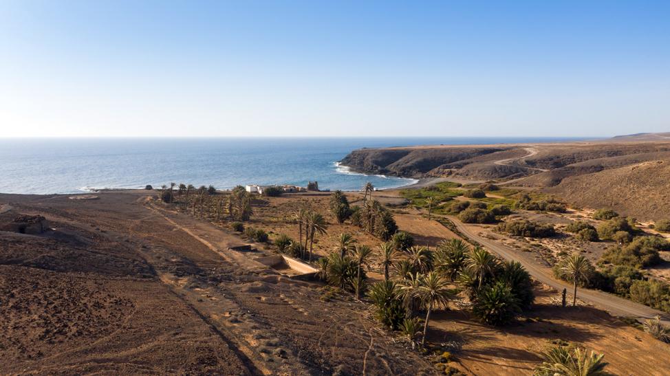 Barranco de La Torre, Angitua | Macaronesia Fuerteventura